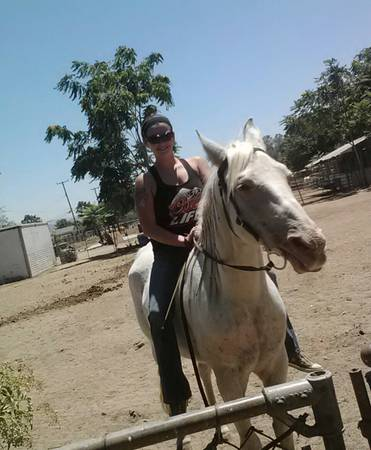 Inland Empire Ca Grey Horse Needs Home Hanaeleh Horse Rescue And